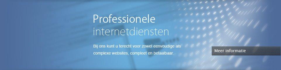 Professionele internetdiensten